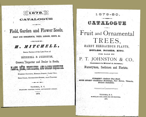 Mitchell & Johnson seed catalogues